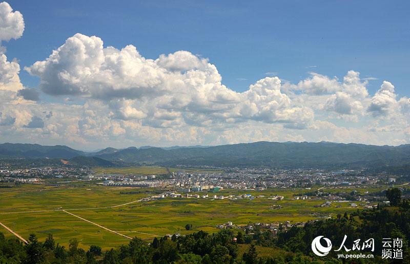 到云南昌宁去看那些美得忘了自己的田园