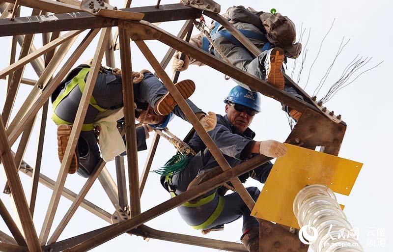 工作人员在直线塔的的绝缘子串顶端安装防鸟粪挡板