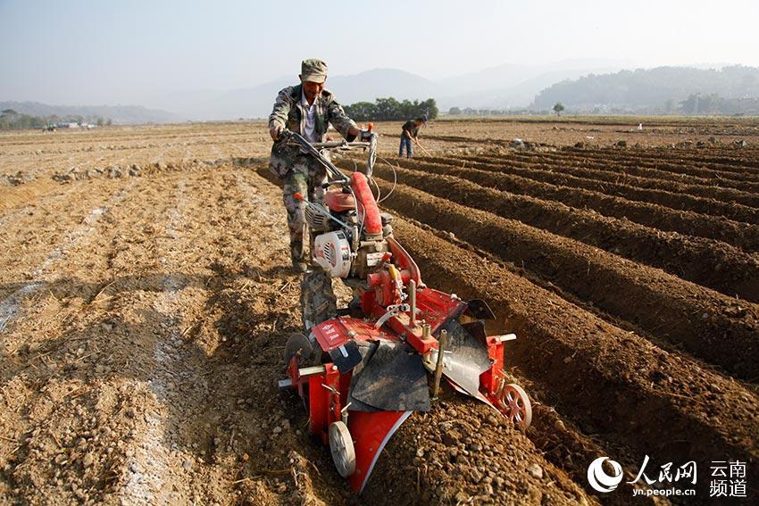 云南省德宏傣族景颇族自治州梁河县曩宋阿昌族乡的村民在使用耕犁机图片