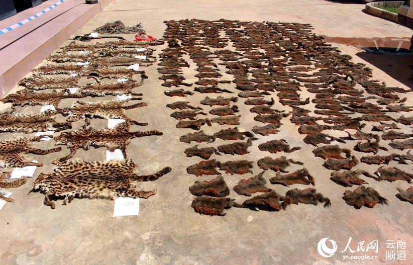 级保护野生动物制品