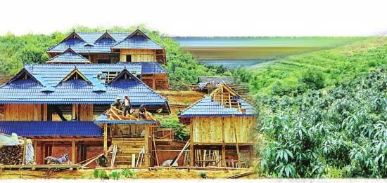 西双版纳勐海:一场教程摘双帽战役6版第二答案v教程图片