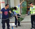 剧毒眼镜王蛇闯入农户家中 一条重达12斤的剧毒眼镜王蛇闯入该县一村民家中不肯离开。