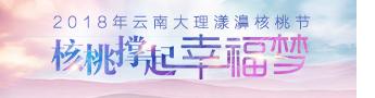 2018年云南·大理漾濞核桃节