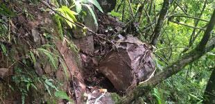 """震后墨江村庄后山现多块巨石村民采取""""土办法""""将石头用铁链拴住固定在附近的树木上。"""