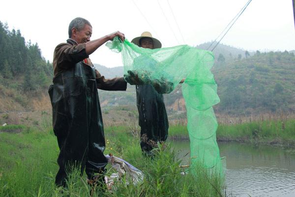 下咪哩克村民正在收網。攝影:陸安恆