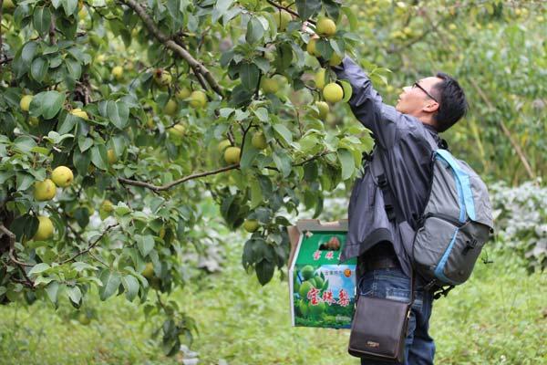 http://www.kmshsm.com/caijingfenxi/22280.html