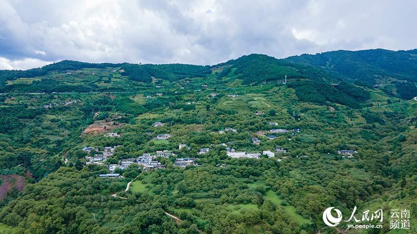 古富村:生态产业打造的致富路